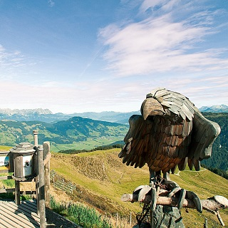 Experience Hiking in Westendorf