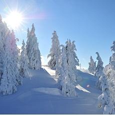 Irrsinnig schön winterwandern am Berg.