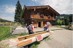 The Ideal place for meetings on Hochbrixen