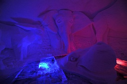 ALPENIGLU magic night - Event programme